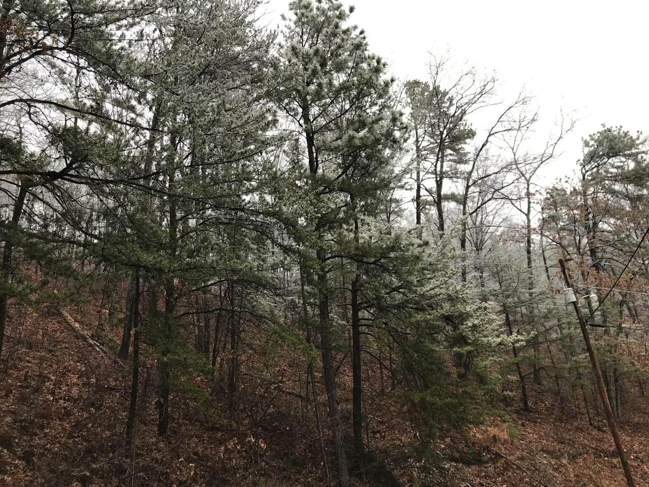Overholt Trail - Photo 1