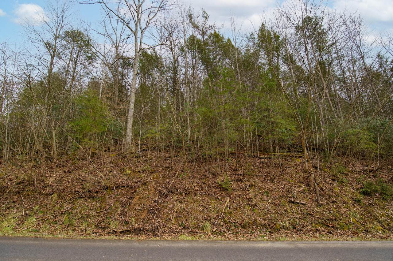 Lot Tr-1 Henry Town Rd - Photo 1
