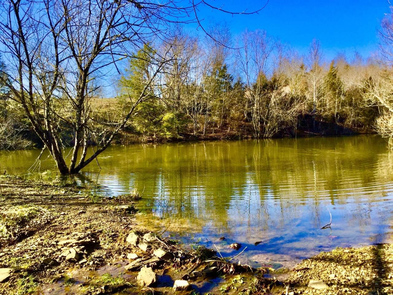Grassy Creek Rd - Photo 1