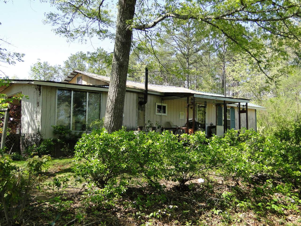 316 Epperson Road Rd - Photo 1