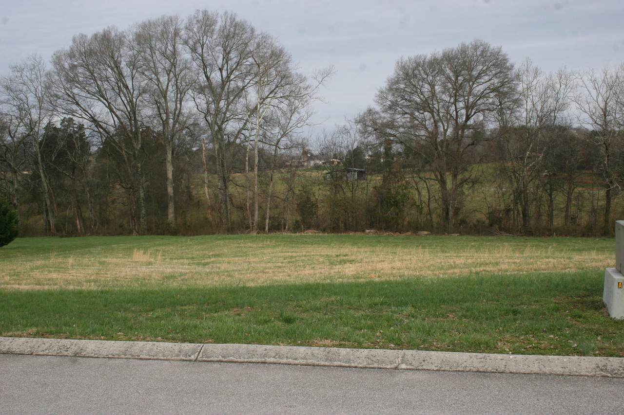 Old Hickory Circle - Photo 1