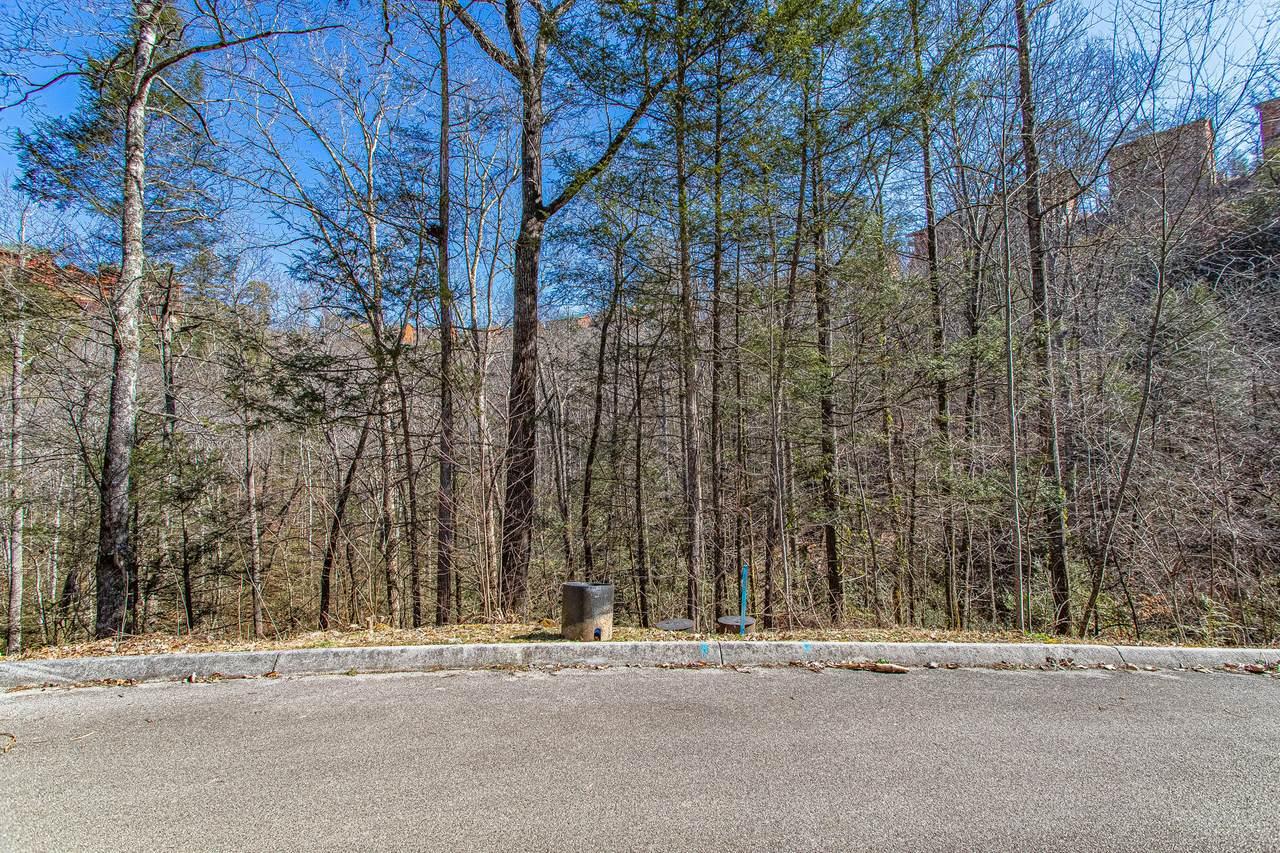 Lot #72 Smoky Ridge Way - Photo 1
