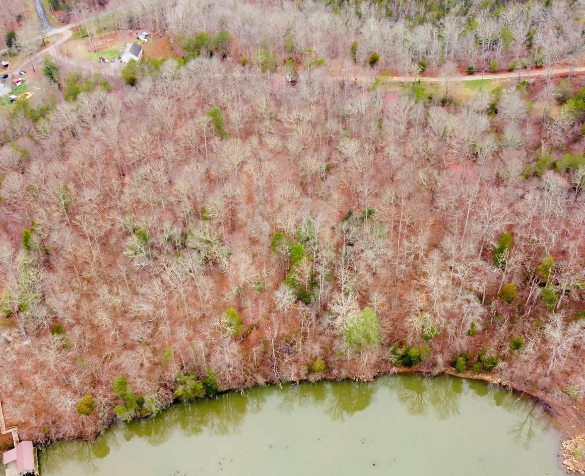 Tract/Lot 2 - Scenic River Rd - Photo 1