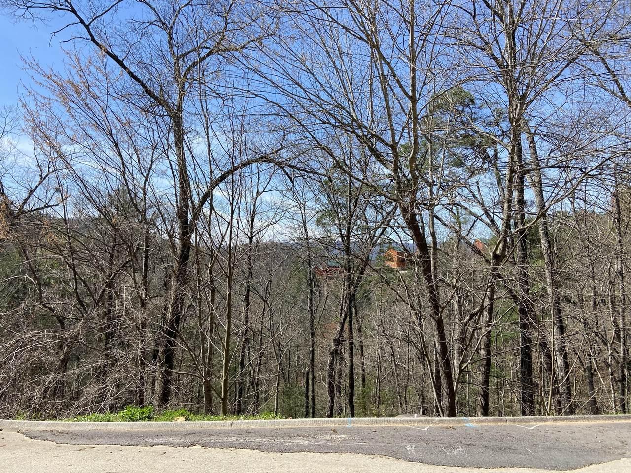 Lot #74 Smoky Ridge Way - Photo 1