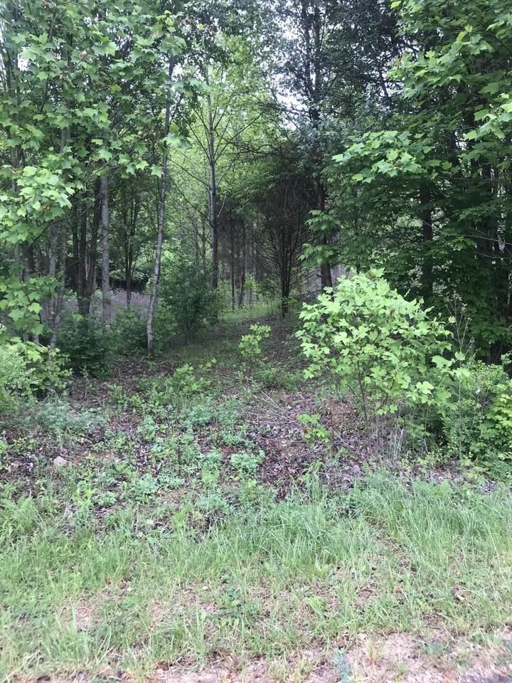 Hidden Brook Drive - Photo 1