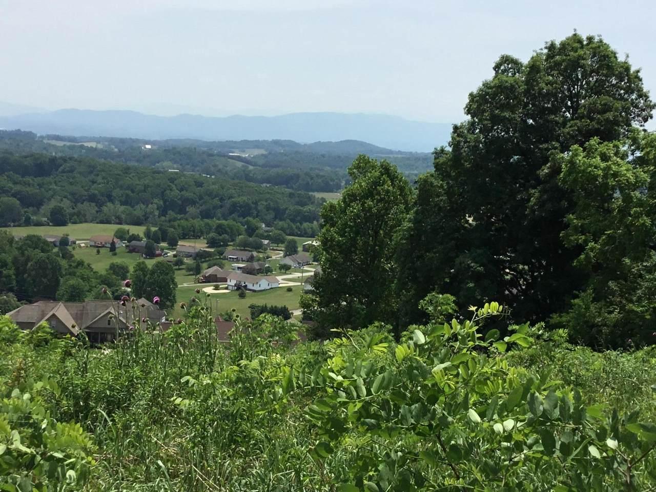 Lot #58 Scenic View Drive - Photo 1