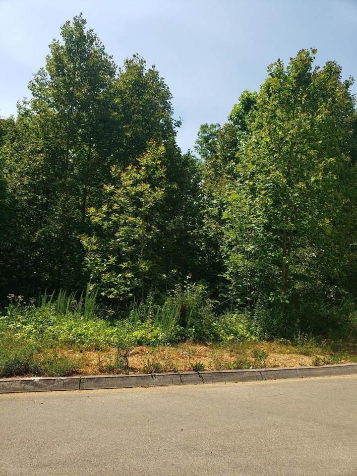 285 Wedgewood Drive - Photo 1