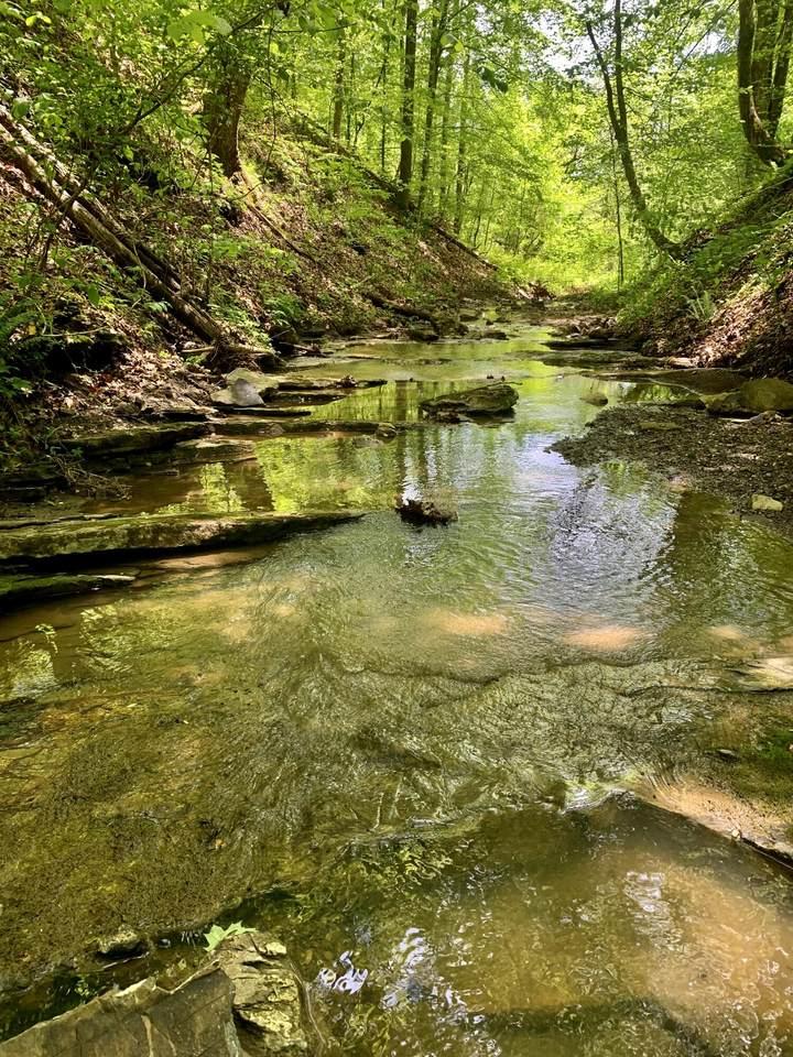 Stock Creek Rd - Photo 1