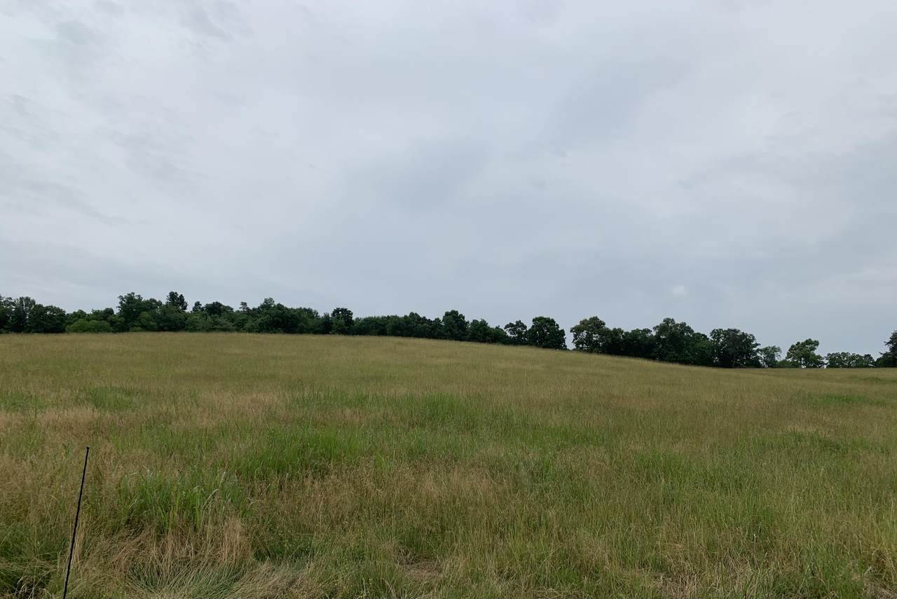 5.85 AC Vonore Rd Tract 6 - Photo 1