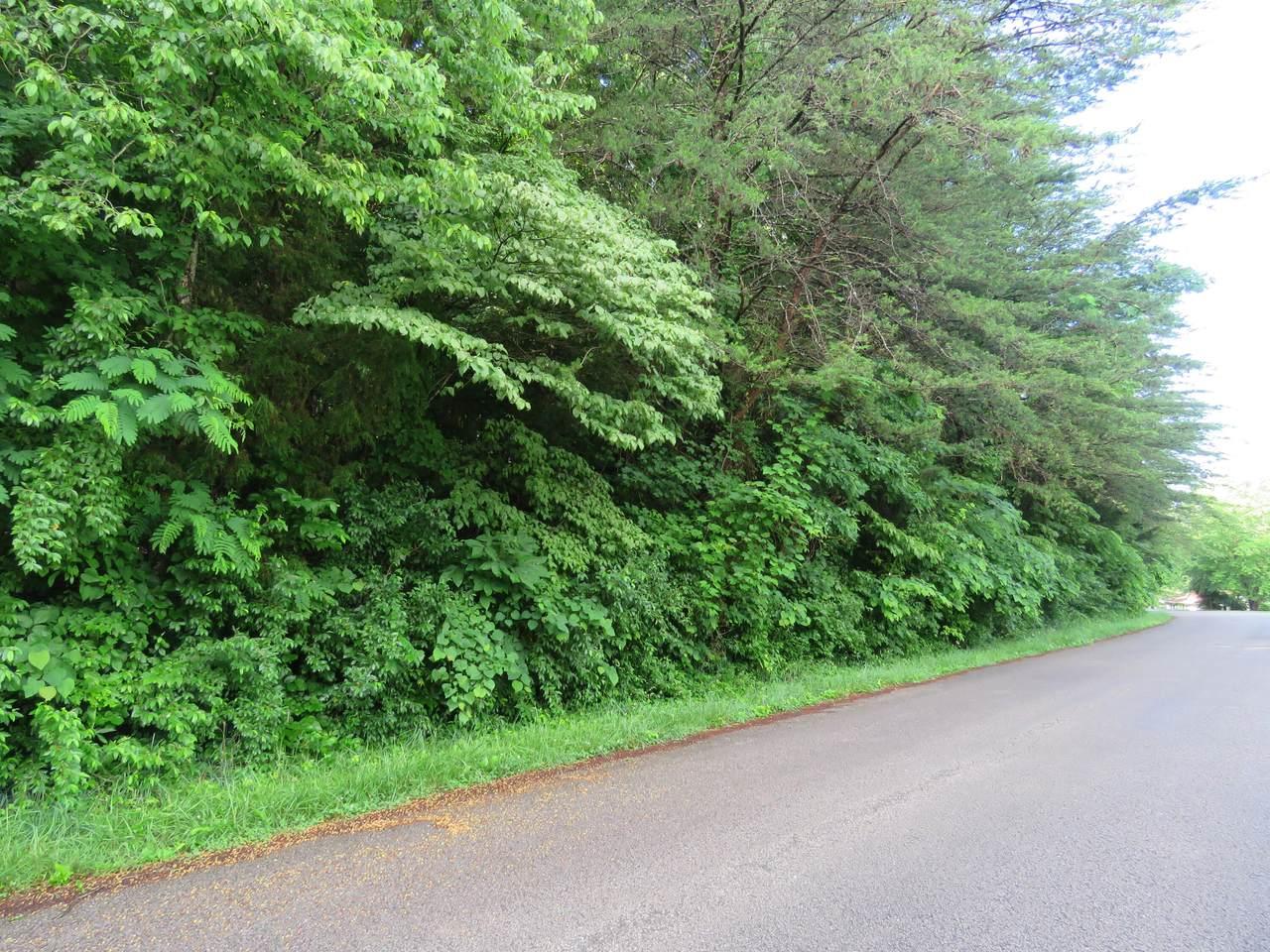 00 Boone Drive - Photo 1