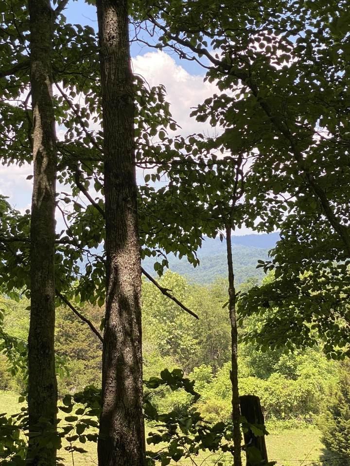 000 Chestnut Ridge Rd - Photo 1