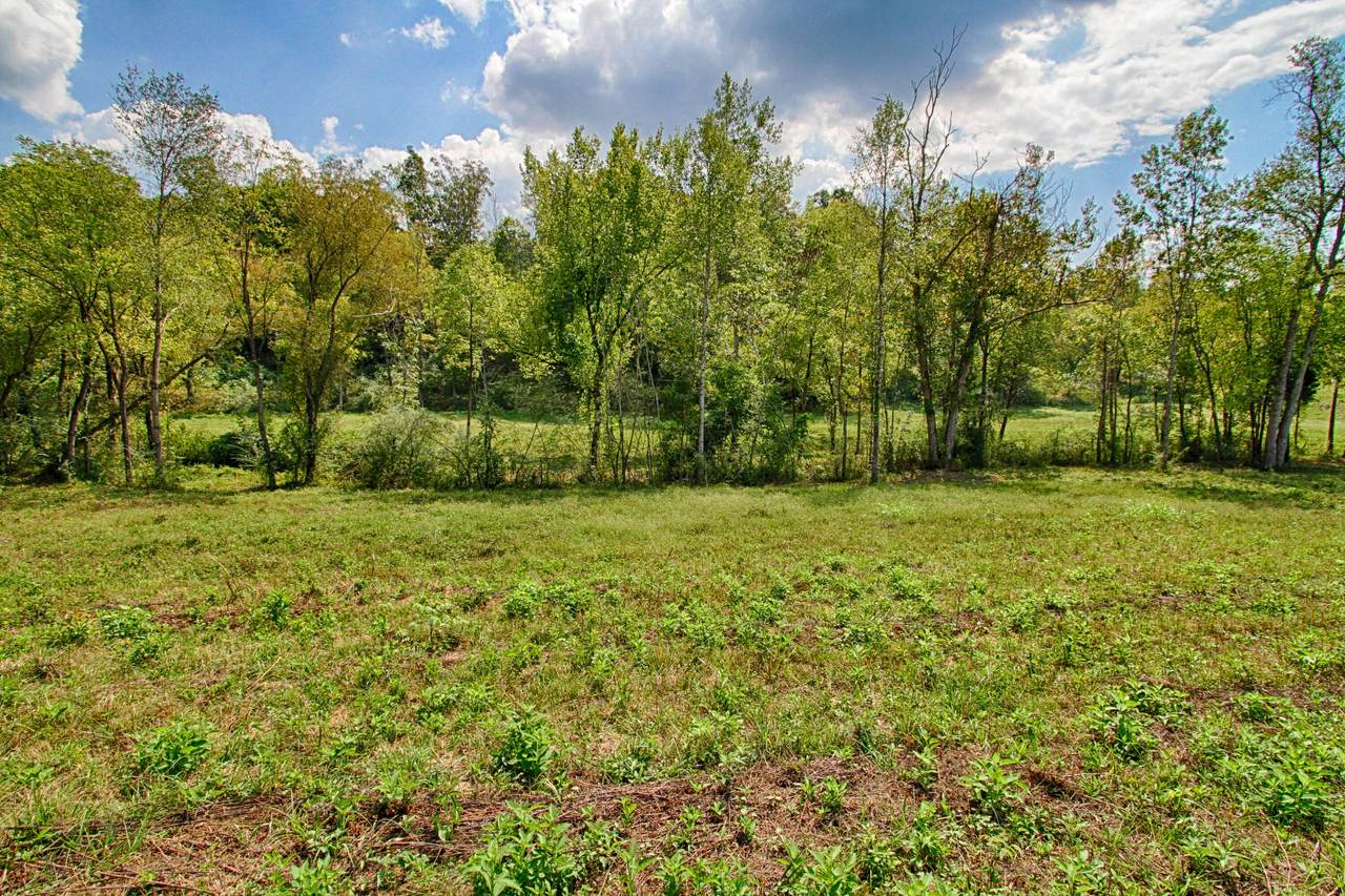 Lot 4 Wolf Valley Rd - Photo 1
