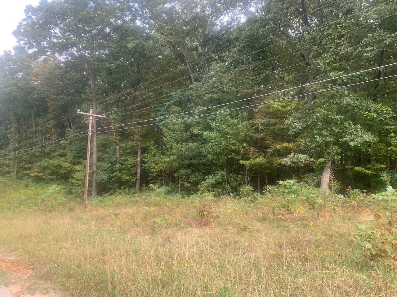 Elmwood, Lot 97 Drive - Photo 1