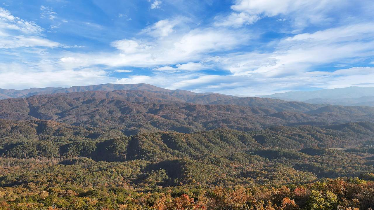 Tract 29r5 Chilhowee Mountain Tr - Photo 1