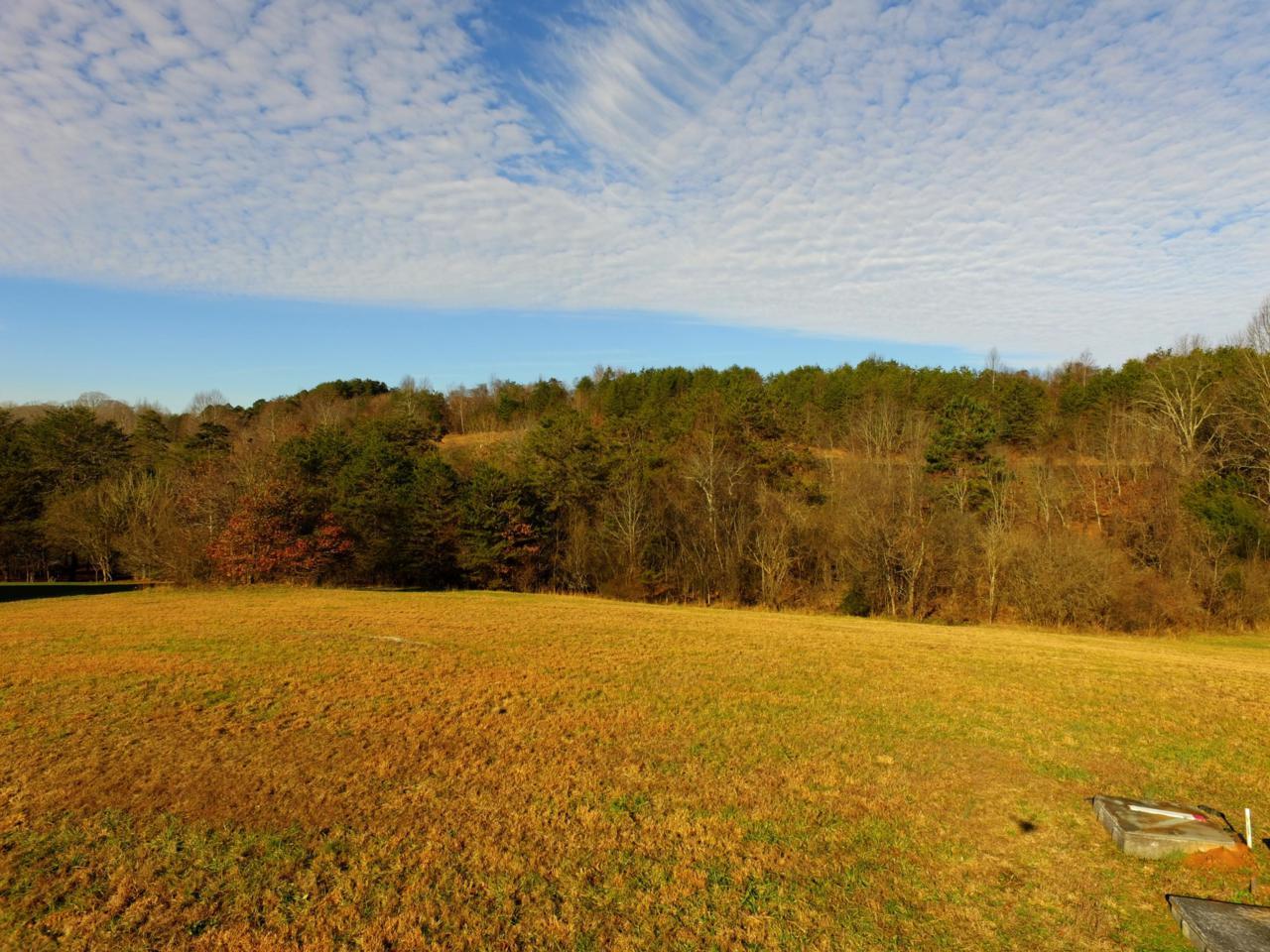 180 Morning Dove Drive - Photo 1