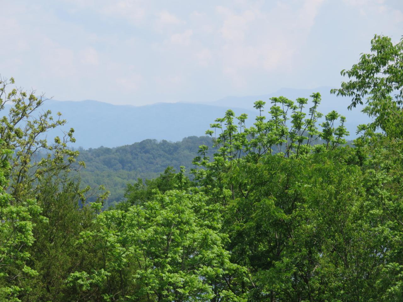 Itawa Trail Lot 7 - Photo 1