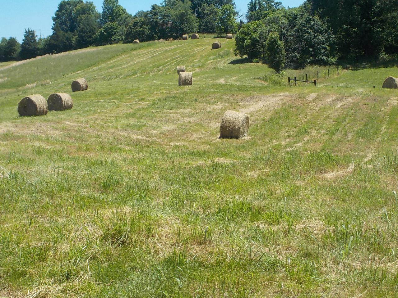 Lot 12 Indian Ridge Road - Photo 1