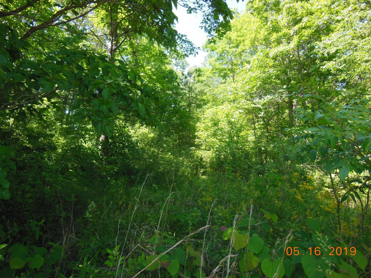 1162 Red Cloud Road Rd - Photo 1