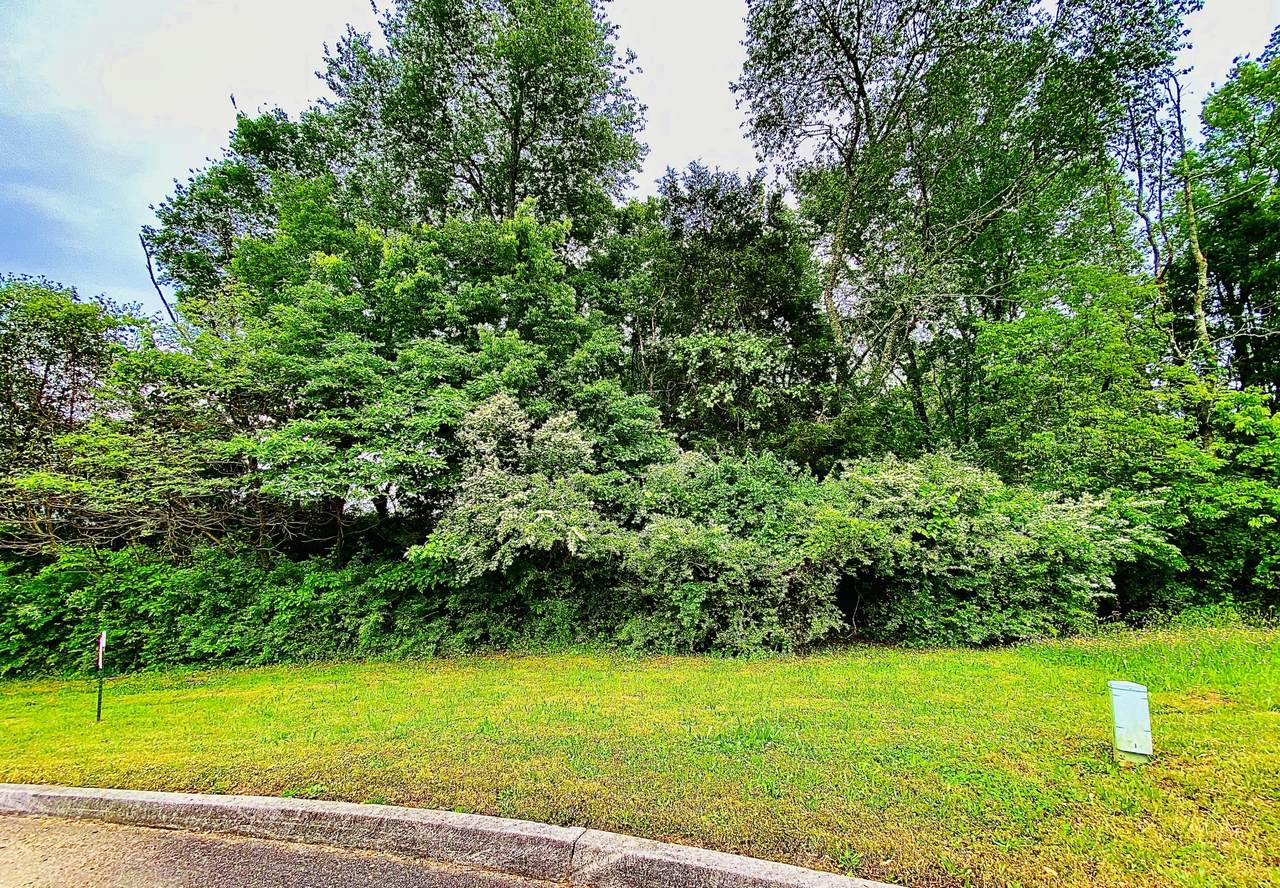 1299 Oakley Glen Lane - Photo 1