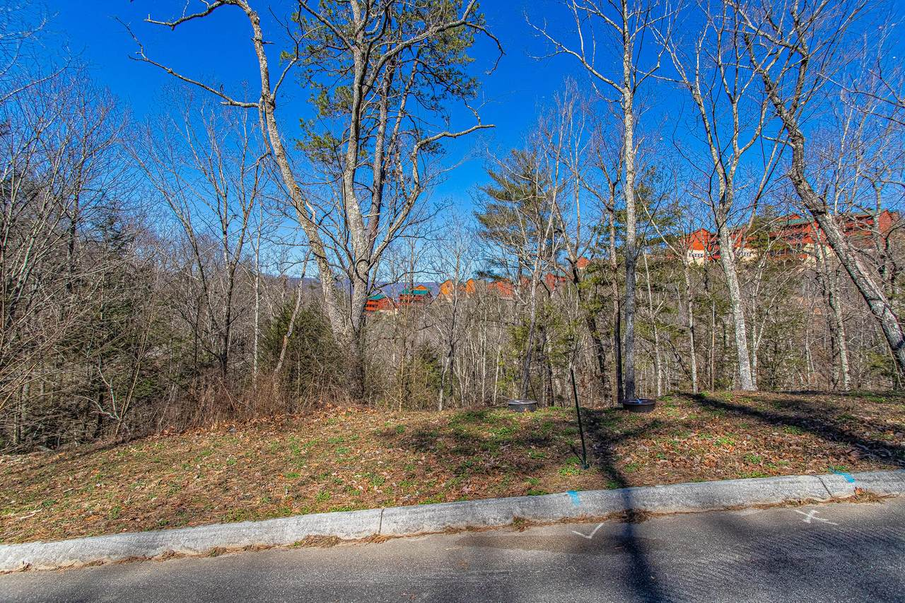 Lot 68 Smoky Ridge Way - Photo 1
