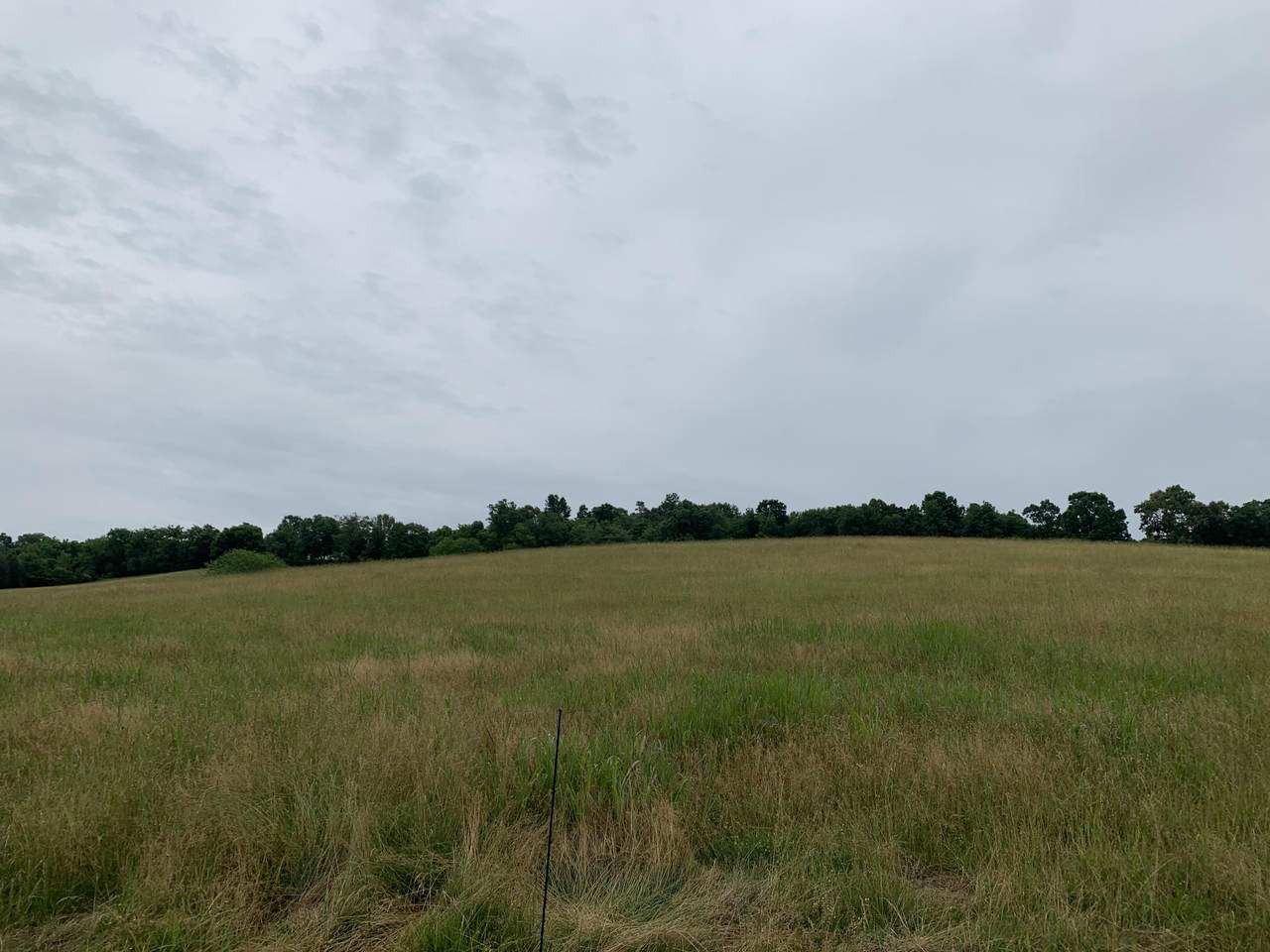 64 ac Vonore Rd Tract 5 - Photo 1