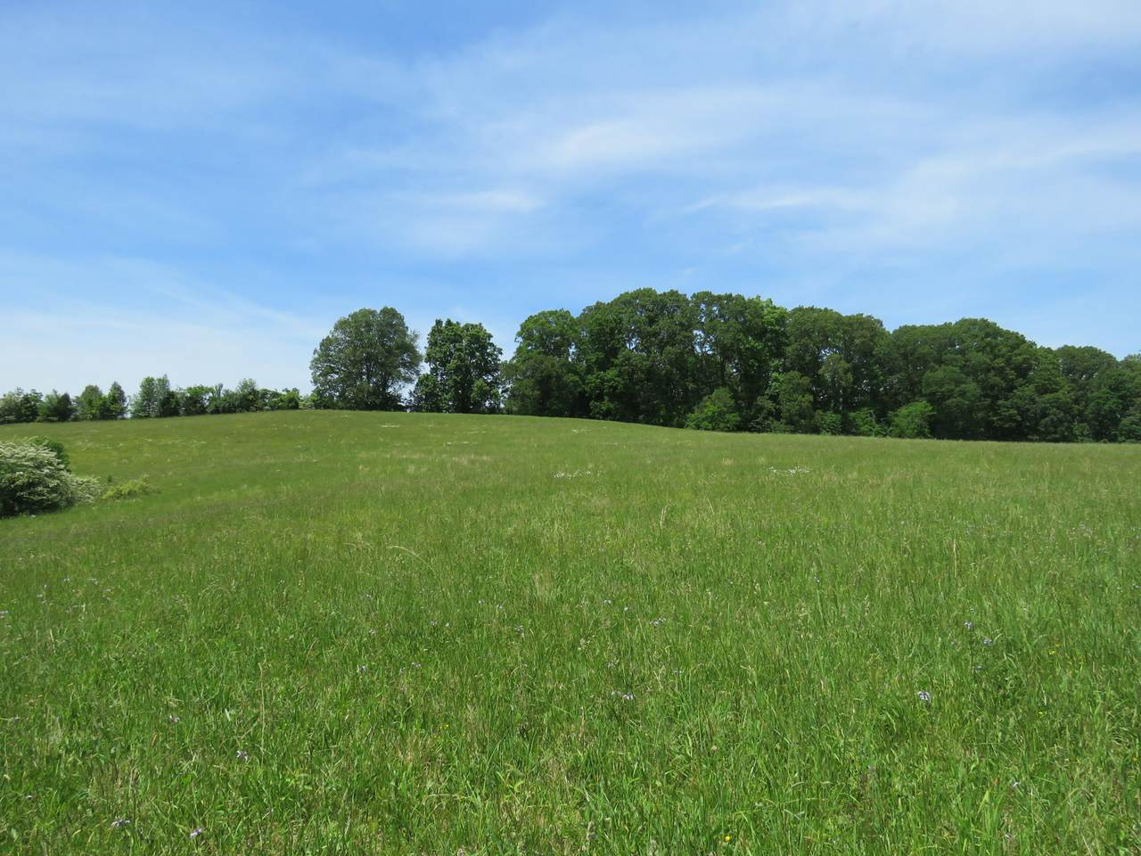 1717 Long Farm Way - Photo 1