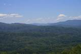 Tract 29r7 Chilhowee Mountain Tr - Photo 30