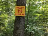 Woodland Trail - Photo 2