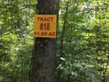 Woodland Trail - Photo 3