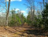 521 Eagle Point Drive - Photo 21