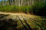 197 Cherokee Winds - Photo 13
