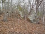 Joppa Mountain Road - Photo 1
