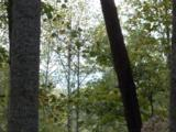 00 Scenic Trail - Photo 3