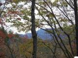00 Scenic Trail - Photo 6