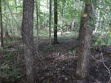 Sequoyah Lane - Photo 3