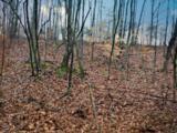 Clay Hollow - Photo 2