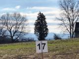 Lot 17-Fairway Drive - Photo 1