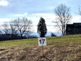 Lot 17-Fairway Drive - Photo 2