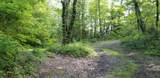 Lick Creek Rd - Photo 12