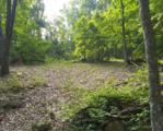 Carrs Creek Rd - Photo 16
