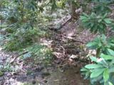 Carrs Creek Rd - Photo 2