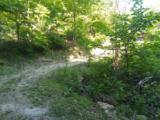Carrs Creek Rd - Photo 3