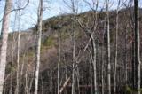0 Alpine Drive - Photo 8
