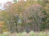 Dogwood Rd - Photo 32
