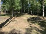 880 Cougar Ridge Private Drive - Photo 30