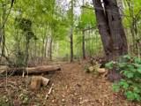 3552 Grassy Fork Rd Rd - Photo 29
