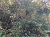 Lot 1-A Grassy Branch Loop - Photo 5