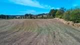 Tract 2 Timber Ridge Rd - Photo 3