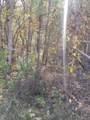 8.62 Acres Tammy Tr - Photo 14