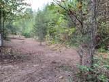 1732 Tall Pines Way - Photo 6